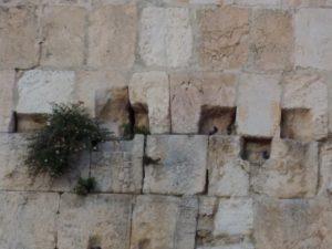 Shalom, peace, שלום